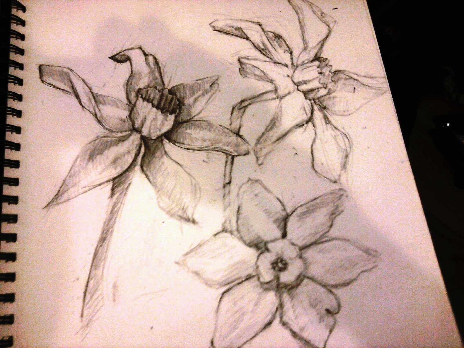 Tangible Dreams Sketch Flowers