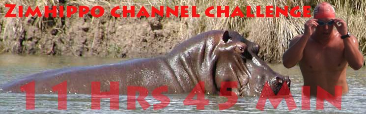 ZimHippo Takes to the Channel