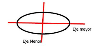 Partes del ovalo