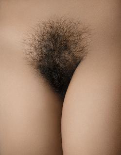 Vajinas