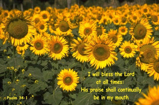 Praise the lord Pslam 34:1 verse with nature background of sunflowers pic