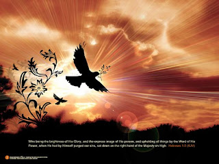 Beautiful sunrise in the morning with birds and nature background with bible verse for desktop photo gallery