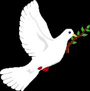 Estamos en la semana de la Paz y Jesús nos invita a pensar y a darnos cuenta . divina pastora dia de la paz