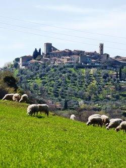 Il paese di Montemerano, arroccato sulla collina. Foto di Andrea Mangoni.