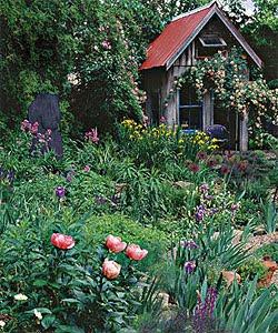 Un cottage garden inglese. Foto tratta da http://www.finegardening.com.