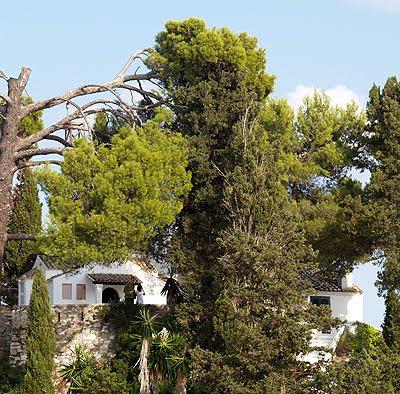 Il monastero di Pontikonissi nascosto dagli alberi. Foto di Andrea Mangoni.