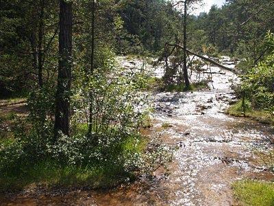 Il torrente che alimenta lagole. Foto di Andrea Mangoni.