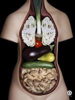 Trofologia, dieta disociada, combinaciones alimentos