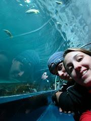 Sydney Aquarius - Austrália - Abril 2009