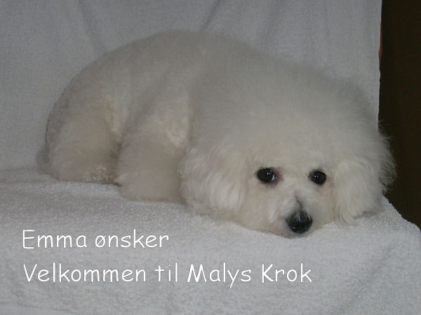 Malys Krok