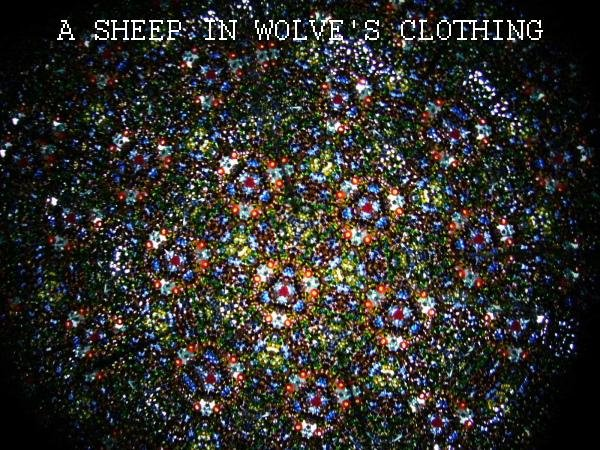 A sheep in wolve's clothing