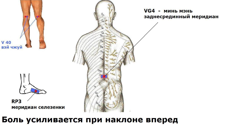 лекарства выводящие паразитов из организма