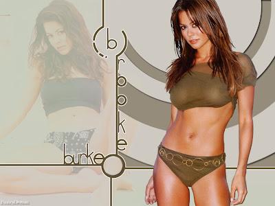 Brooke Burke bikini wallpapers