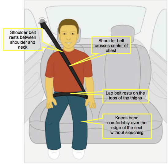 The Car Seat Lady The 5 Step Test Your Way To Know If A