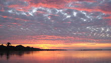 Sunrise on the amazing Amazon River