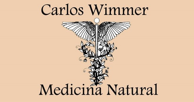 Carlos Wimmer