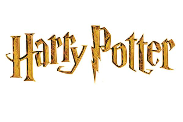 The Harry Potter´s Word