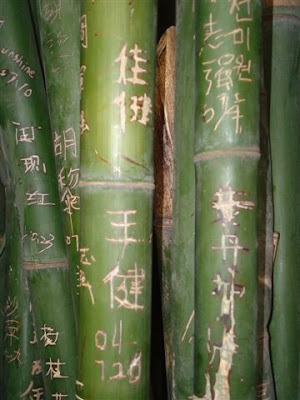 bamboo, graffiti alphabet