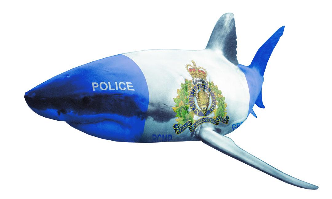 police_shark.jpg