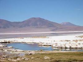 El Salar del Huasco, en peligro