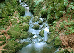 آبشار گهر2