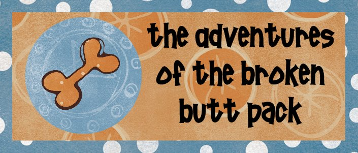 The Adventures of the Broken Butt Pack