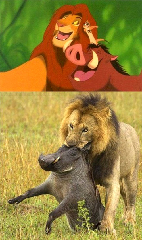 lion-king-is-a-lie