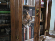 Martha&#39;s bookshelf