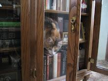 Martha's bookshelf