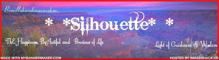 ~SILLHOUTTE~