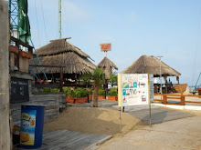 Viking bar - Flower street - Sunny Beach