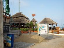 Viking bar - Flower street - Sunny Beach