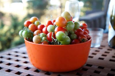 tomatteja