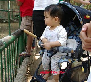 แม่และเด็ก mom&baby naamOOn.blogspot.com