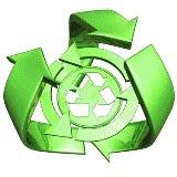 solidaritas lingkungan