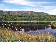 Shuniah Lake