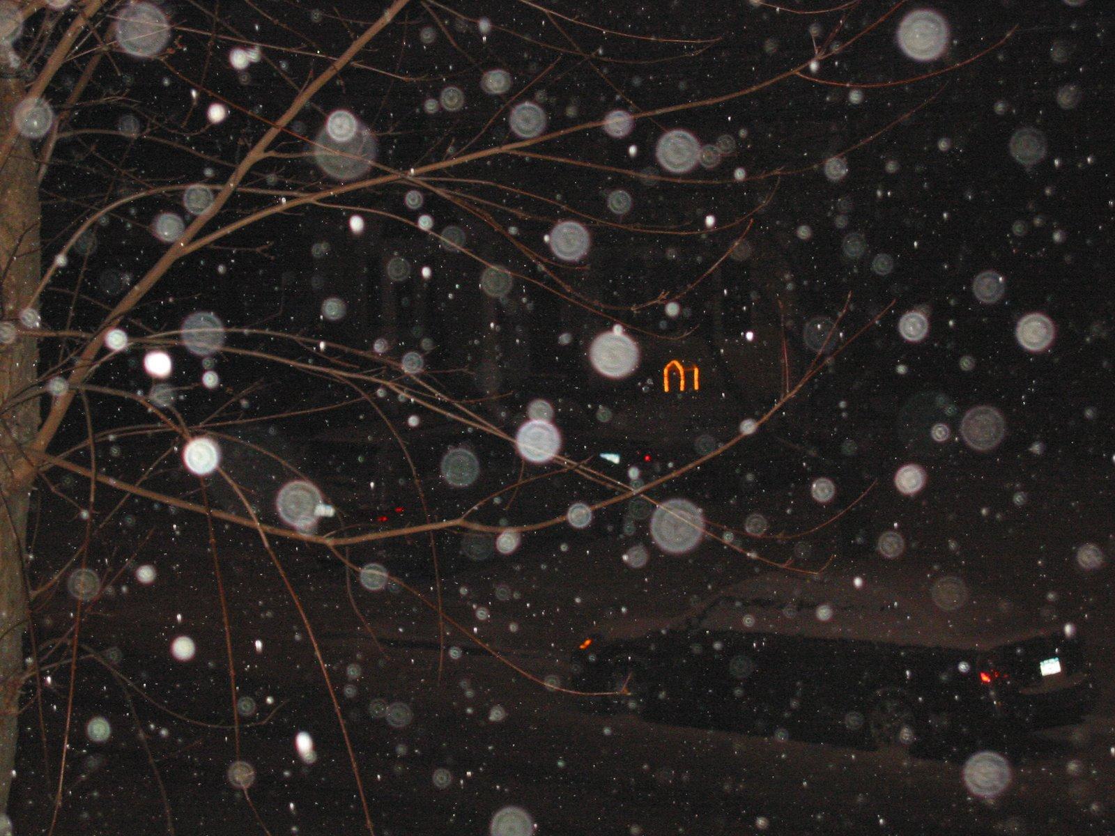 [IMG_0211.jpgfairy+snow]