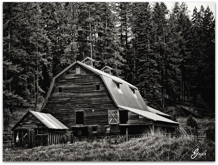 The Old barn in Coeur D' Alene, Idaho