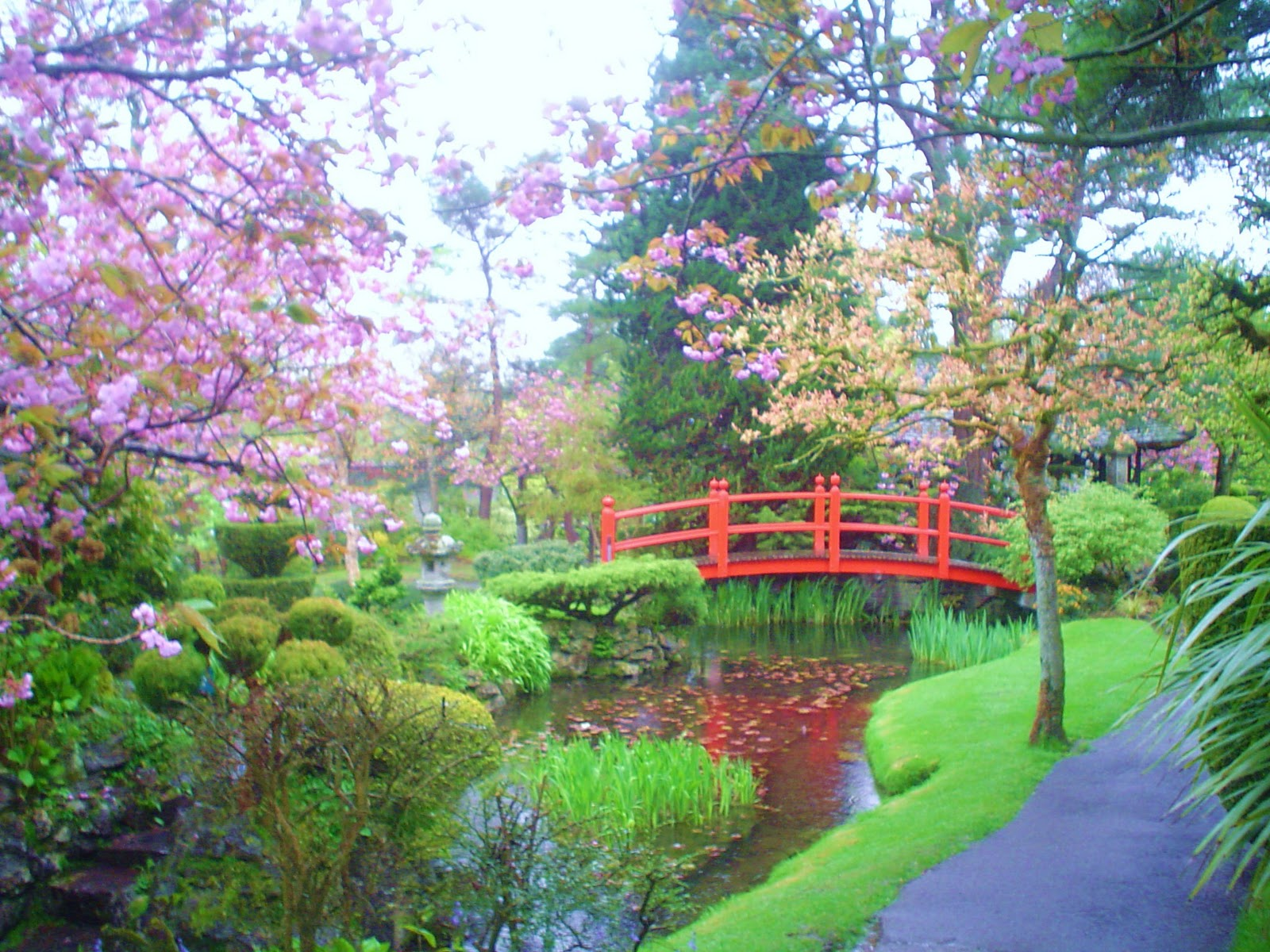 japanese gardens kildare ireland The Vegetarians Abroad: Irish National Stud and Japanese