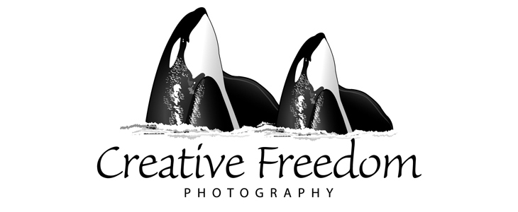 Creative Freedom Photography Blog