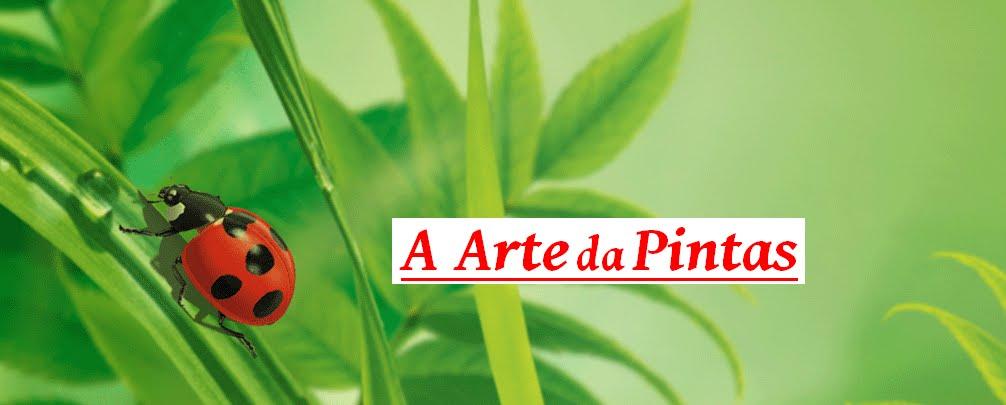 A ARTE DA PINTAS