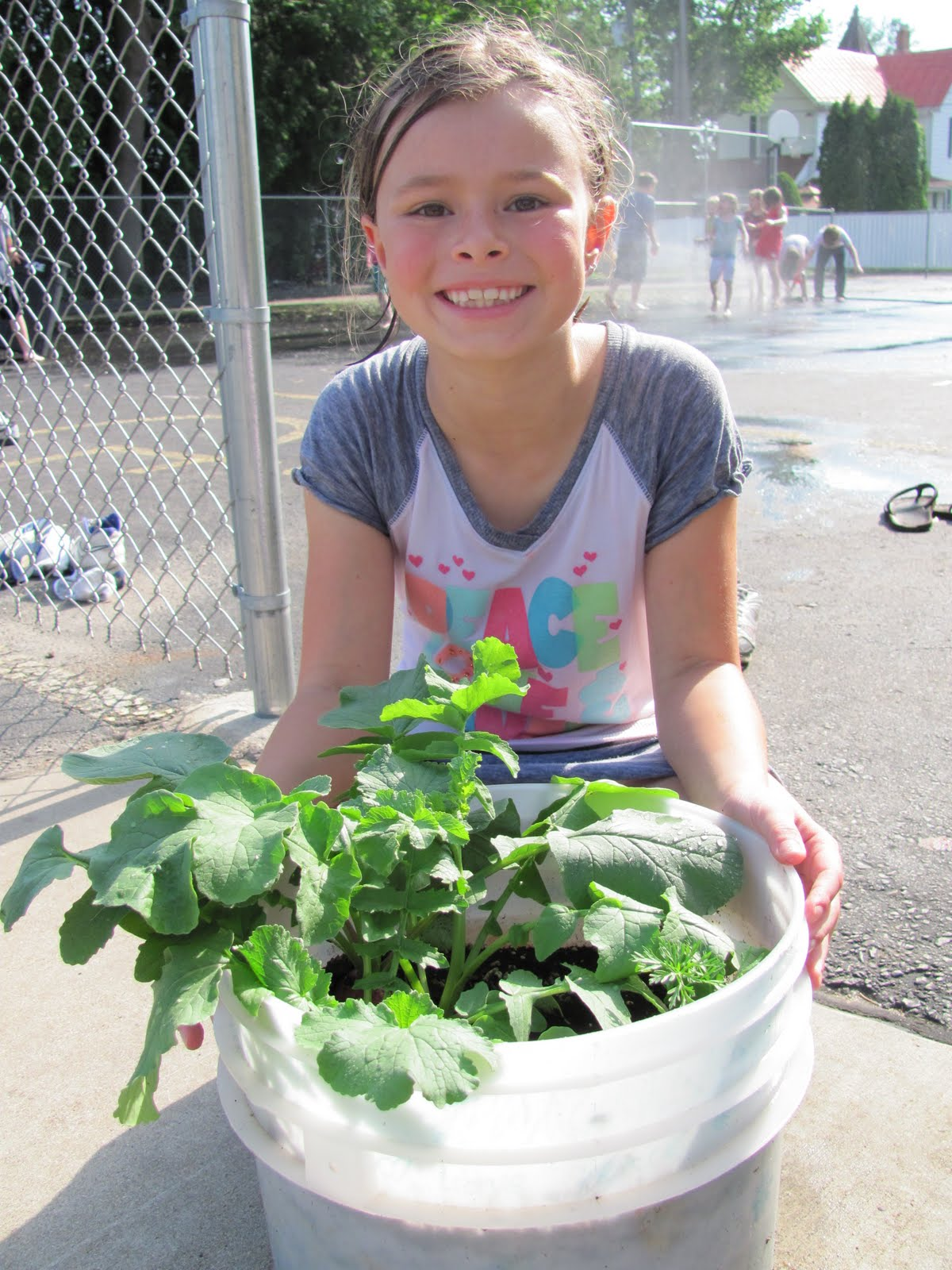Gotdirtwi Photos Boys And Girls Club 39 S Container Garden