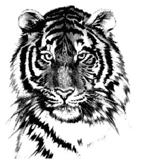 save our tigers Why save the tiger in the natural world the tiger's only predator is man it is our collective responsibility to stop the killing and save the tiger in the wild.
