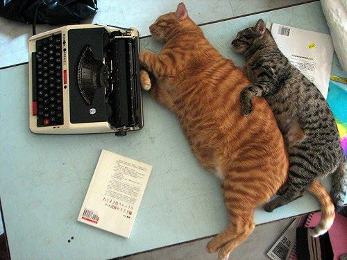 http://1.bp.blogspot.com/_lWVCWLbe2CI/S_FrU6tq4uI/AAAAAAAAB38/av9n9haGkWg/s1600/cat,cats,typewriter.jpg