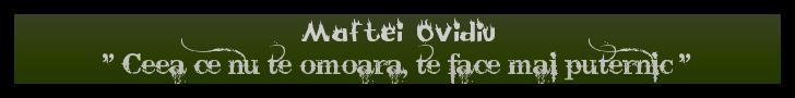 Maftei Ovidiu