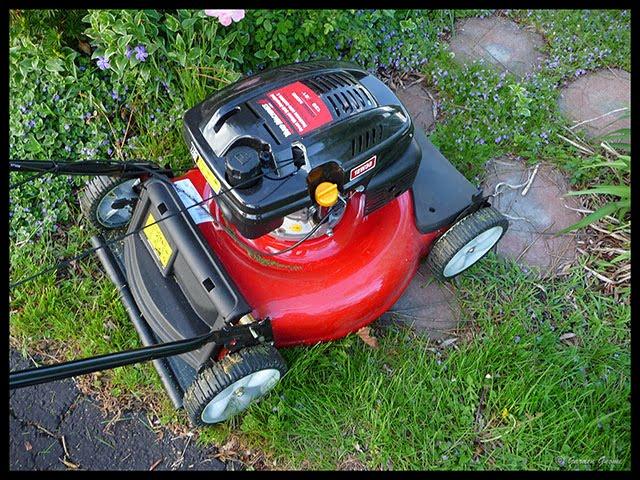 Mtd Tractor 1600 : Garden gnome wanderings new lawn mower