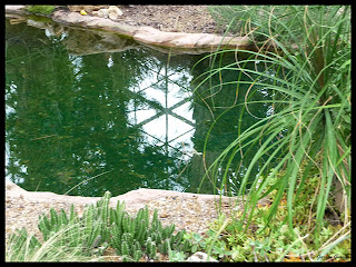 desert dome pond at