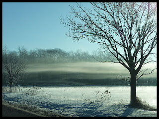 frost and fog cover the countryside