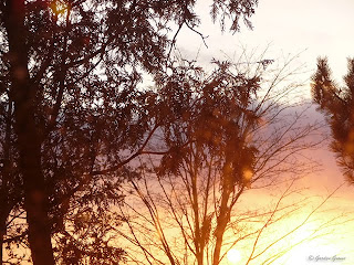 sunset January 30, 2010