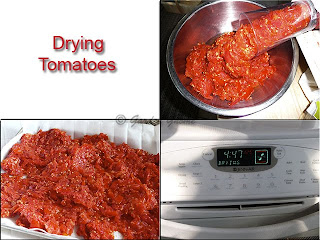 drying tomato skins